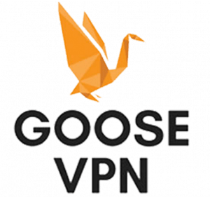 gooseVPN black friday